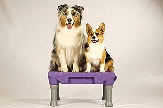 Blue-9 Pet Products The KLIMB Dog Training Platform and Agility System