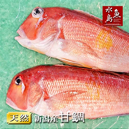 魚水島 新潟産 天然 甘鯛 アマダイ(グジ)1,500g以上・2尾(生冷凍)