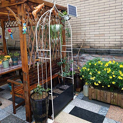 SDKFJ Pérgolas de jardín Plantas trepadoras de Acero duraderas del cenador del Metal casero Robusto del Arco del jardín Ideales para Las vides