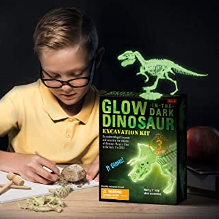 Glow in The Dark Dinosaur Excavation Kit (Tyrannosaurus)