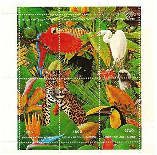 Tropenwald, 6 waarden in een nieuw, zonder scharnier, postzegels van Batumi