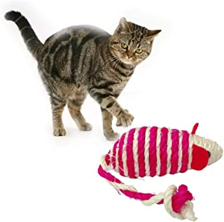 RvPaws Sisal Mouse Cat Toy - Color May Vary.
