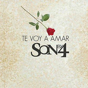 Te Voy a Amar (Salsa Version)