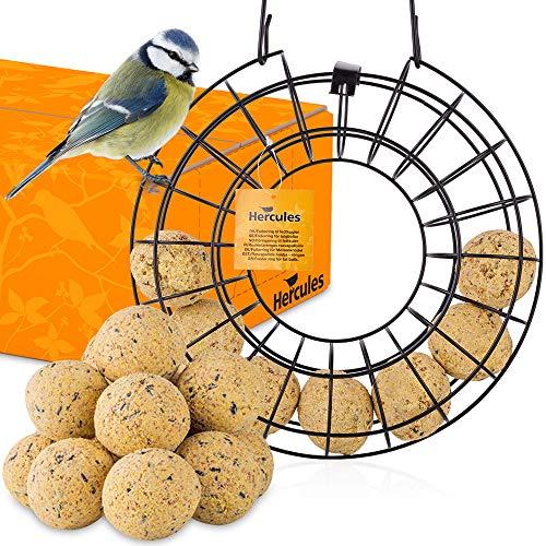 zooprinz Premium Futterring mit Meisenknödel zum Aufhängen, Meisenknödel Halter – Perfekt für alle Vögel als Ganzjahresfutter – Die Wildvögel Werden es lieben - Futtersäule Vögel