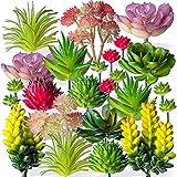 Housenior 24 Pack Mini Artificial Succulent Plants Unpotted : Fake Succulents Picks Realistic Plastic Cactus Stems for Terrarium Bulk Small Faux Assorted Arrangements Flocked Greenery