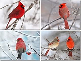 sechars - 4 Piece Modern Canvas Painting Wall Art Birds Red Cardinal on Snowy Branch Pictures Print for Living Room Decor Winter Landscape Poster Gallery Wrap Ready to Hang