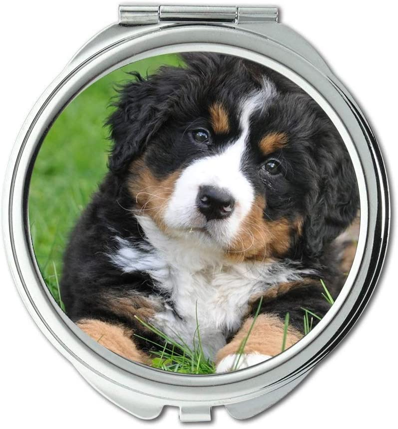 Yanteng Mirror Compact Bernese A Mountain Dog Brand new Spring new work one after another Big