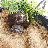 Cocooneo Hábitat de ocultación Reptiles Casa de Refugio de cáscara de Coco Natural, Tortuga, Cangrejo ermitaño, Lagarto, araña, hámster-1