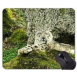 滑り止めのゴム製賭博のマウスパッド、ステッチされた端が付いているユキヒョウのマウスパッド