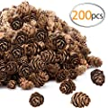 Apipi 200pcs Thanksgiving Rustic Mini Brown Pine Cones in Bulk - Christmas Natural Pine Cones Ornaments for Home Decoration,Fall and Christmas Crafts