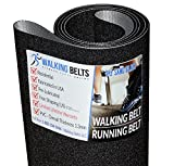 WalkingBeltsLLC - ProForm 600 LT Treadmill Walking Belt PFTL700100 1ply Sand Blast + Free 1oz Lube