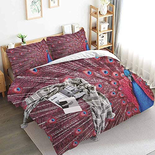 Aishare Store Peacock Duvet Cover Set,A Beautiful Male Displays His Plumage Majestic Surreal Wildlife Theme Artwork,Decorative 3 Piece Bedding Set with 2 Pillow Shams,Full(80'x90') Burgundy Blue