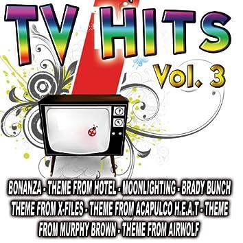 TV Hits Vol. 3