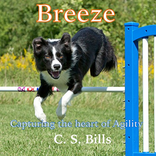 Breeze audiobook cover art