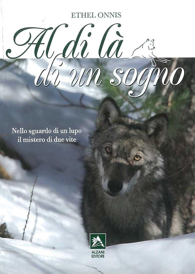 家事をする監督する光沢のあるAl di là di un sogno (Italian Edition)