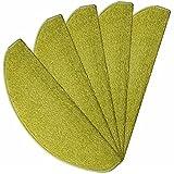 havatex Velours Stufenmatte Trend 24 cm x 65 cm / 15 Stück - schadstoffgeprüft pflegeleicht schmutzresistent robust strapazierfähig Treppe Treppenschutz Stufenschoner, Farbe:Grün