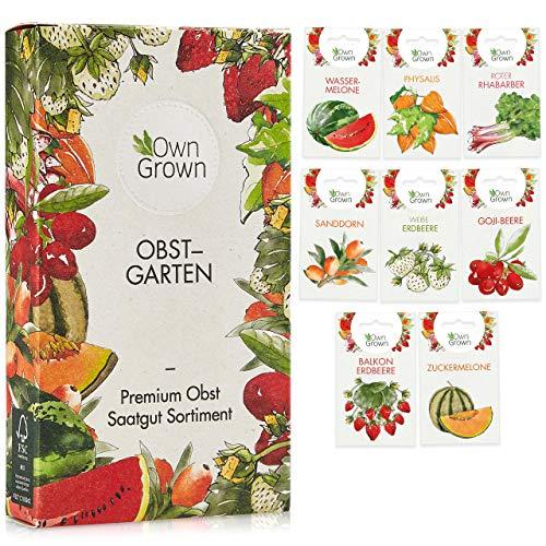 Obst Samen Set: Premium Garten Obst Saatgut mit 8 Sorten Obst Pflanzen für Garten und Balkon – Wassermelone Samen, Erdbeeren Samen, Andenbeere, Rhabarber uvm. – Obstsamen Geschenk Set von OwnGrown