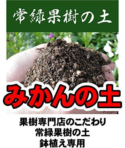 鉢植え専用 みかんの土(肥料入り) (14L) 【資材】 常緑果樹専用 鉢植え専用 培養土 ミカン 蜜柑