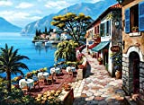 Jigsaw Puzzle For Adults, Overlook Cafe II Puzzle 500 Pieces, Jigsaw Puzzle For Adult, For Her, Quarantine Gift Box