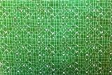 Unbekannt Westfalenstoffe Klassisch * Hähnchen grün *