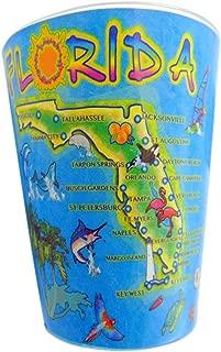 Florida Map Shot Glass Decorative Souvenir Glasses Set Pack of 2