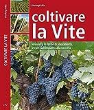 coltivare la vite (guide del buon raccolto)