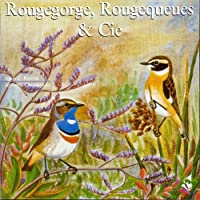 Robin Redstarts & Company
