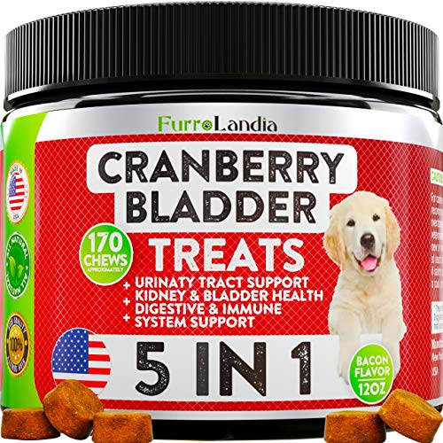 Cranberry Supplement for Dogs - Effective Dog UTI Treatment Food - Cranberry Pills for Dogs - Helps Support Healthy Urinary Tract and Immune System - Bladder Support for Dogs - 170 Soft Chews