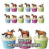 12 x diseño de animales caballo Mix comestibles Tarjeta de cuadrícula adornos para tartas función atril UPS