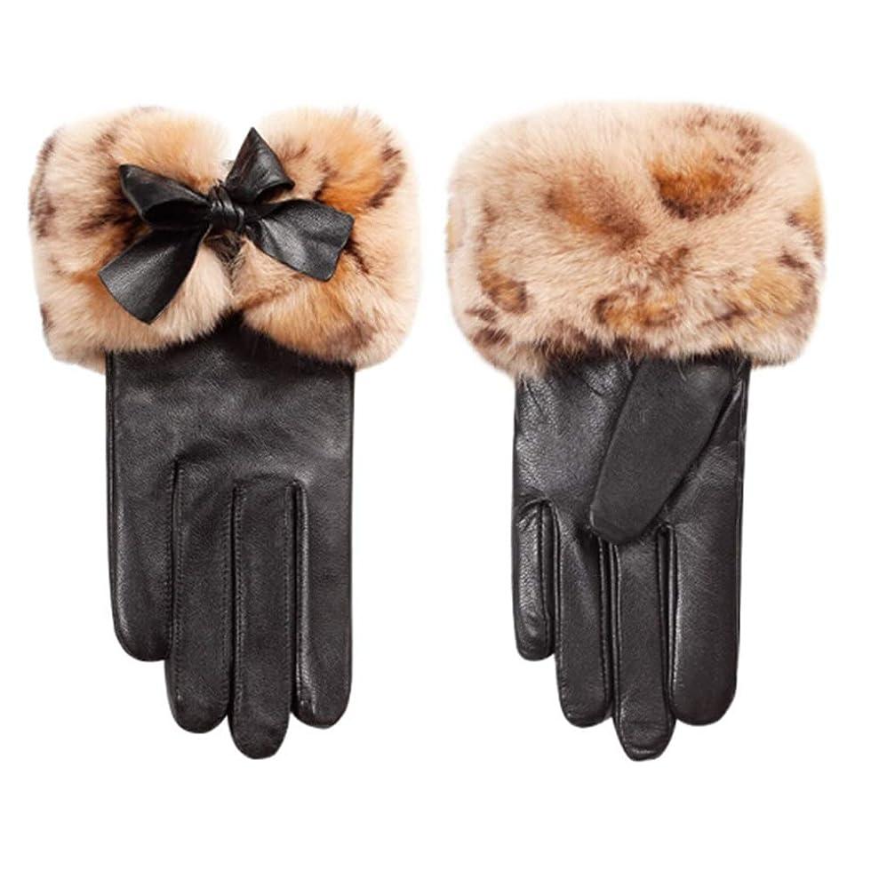 店主居眠りする最初は手袋女性の冬プラスベルベット厚い暖かい韓国のかわいい乗り物運転屋外防風レディース革手袋N2E8X81452黒M