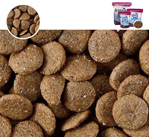 ナチュラルバランススウィートポテト&ベニソン(全犬種/全年齢対応)2.27kg