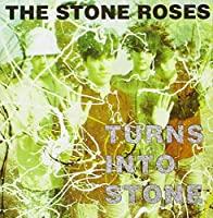 TURNS TO STONE