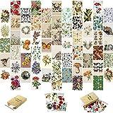 Kit de Collage de Pared Botánico Vintage de 60 Piezas Arte de Pared con Imágenes Estéticas Póster Pequeño Botánico Vintage para Decoración de Pared de Hogar Colegio Dormitorio Oficina
