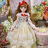 45cm / 17.71 インチ ファッション 人形 26 ジョイント 人形 多関節 1/4 完全に ポーズ可能 BJD 人形 3D Eyes コレクタ 人形 女の子の 贈り物 おもちゃ DIY モデ
