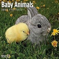 Cal 2021- Baby Animals Wall (Nature)