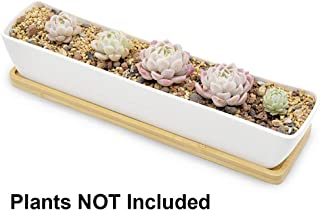 Boloniprod Plant Window Boxes 11.1 inch Long Rectangle White Ceramic Succulent Planter Pots/Mini Flower Plant Containers with Bamboo Saucers Plant Window Boxes (Style 1)