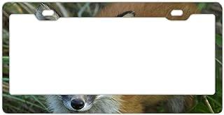 KSLIDS License Plate Frame Pointing Dog Metal License Plate Frame Decorative Car License Plate Auto Tag Sign 6x12 Inch