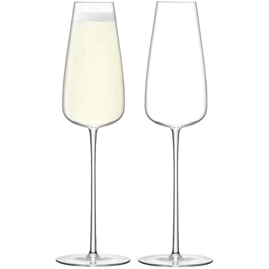 歯科医中国水素LSA International g1427?–?12?–?191ワイン文化シャンパンフルート2パック、1サイズ、クリア