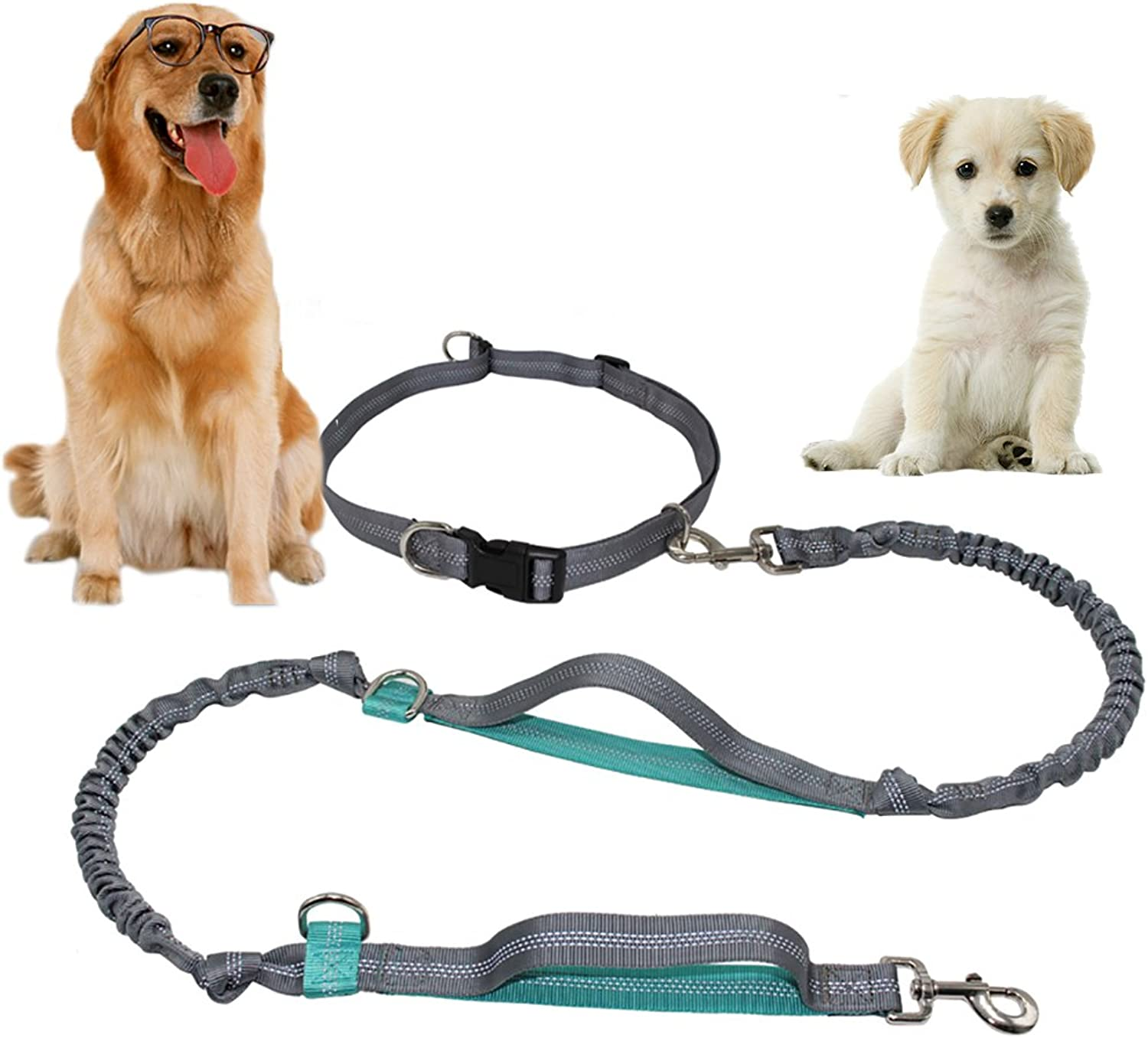 Boxing Hands Free Waist Dog Leash Double Bungees, Retractable Dog Leash Free Control Medium Large Dogs, Double Handles Leash Adjustable Waist Belt Walking Running Jogging.