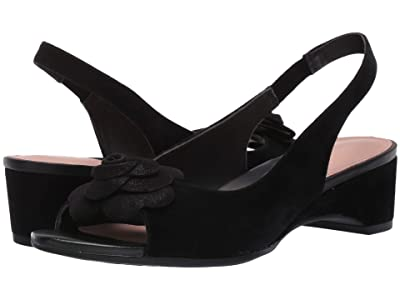 Taryn Rose Neva (Black Suede) Women