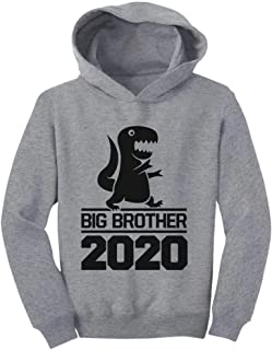 Tstars Gift for Big Brother 2020 T-Rex Boy Toddler Hoodie