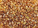 Pinch Bead, 5x3.5mm, 50 piezas, checas prensadas triédrica cuentas de vidrio en la forma de semillas de trigo sarraceno, Crystal Travertine