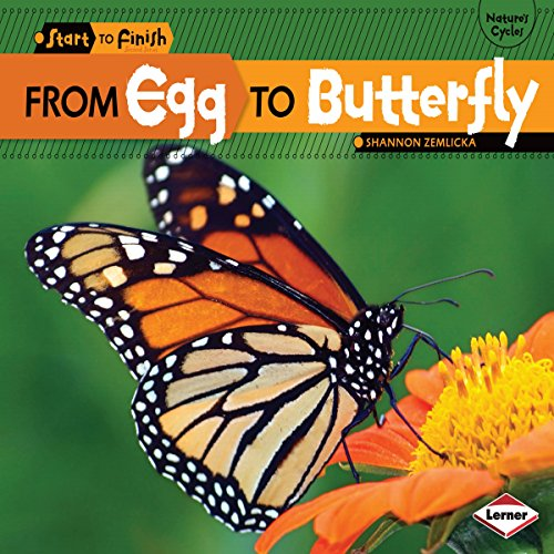 From Egg to Butterfly copertina