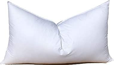 Best 14x20 pillow insert Reviews