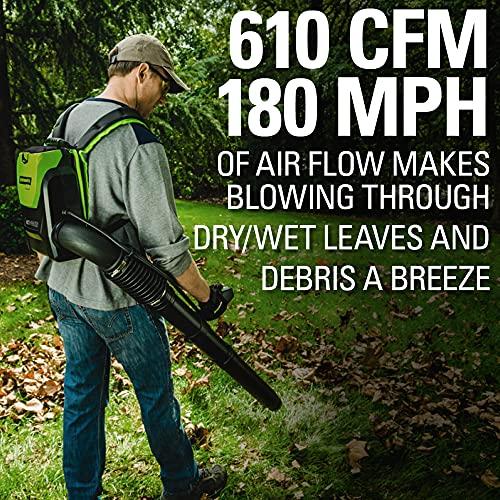 cordless leaf blower high power