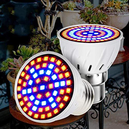 LED B22 Hydroponic Growth Light E27 LED Grow Bulb MR16 Vollspektrum 220V UV-Lampe Pflanze E14 Blumensämling Lampe GU10-48leds_GU10