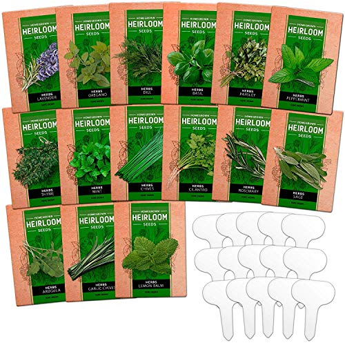 15 Culinary Herb Seed Vault - Heirloom and Non GMO - 4500 Plus Seeds for Planting for Indoor or...