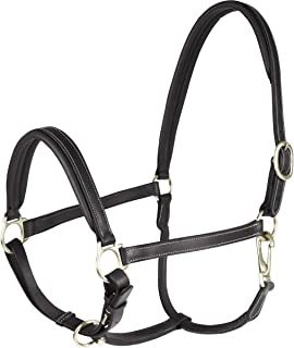 Best rolled leather halter Reviews