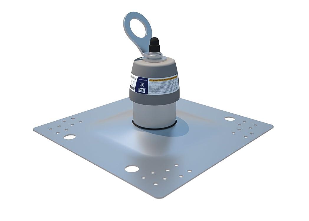 シンボル軽蔑生息地3M DBI-SALA 2100139 Roof Top Anchor for Standard Membrane and Built-Up Roofs with Weather Proofing Shroud, Silver by 3M Fall Protection Business