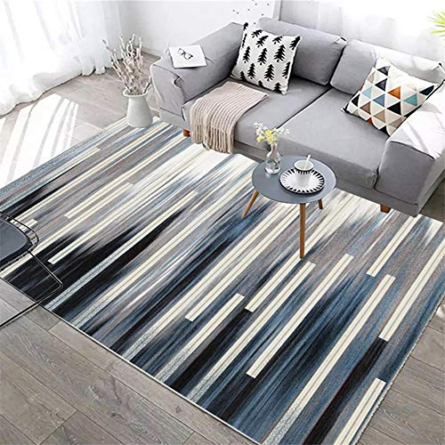 DJHWWD Small Carpets For Living Room Carpet gray blue fuzzy pinstripe pattern modern style rug durable Xl Rug Patterned Rug grey 60X90CM